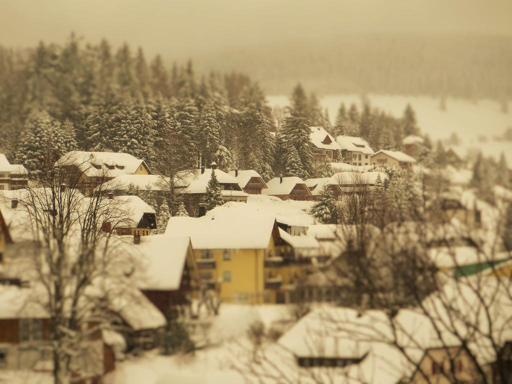 Todtnauberg im Winter