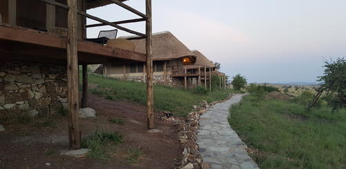 Mara River Post Bungalows