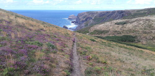 Wanderweg in Richtung Crackington Haven bei Boscastle