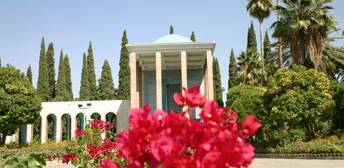 Blumen in Shiraz
