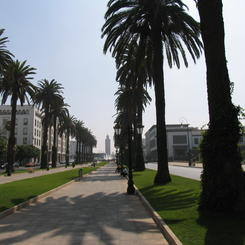 Avenue Mohammed V in Rabat