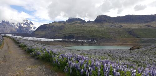 Skaftafell-Nationalpark